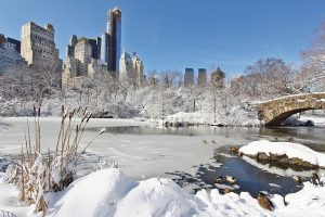 A scene with snow from NYC park during winter.